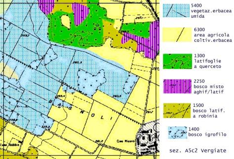 Carta della vegetazione Reale della Provincia di Varese. Chilometro quadrato esemplificativo