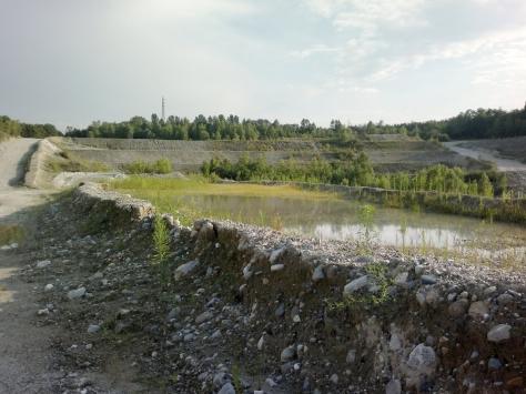 Figura 10: area D, ex cava di Ternate. Foto di Luca Giussani