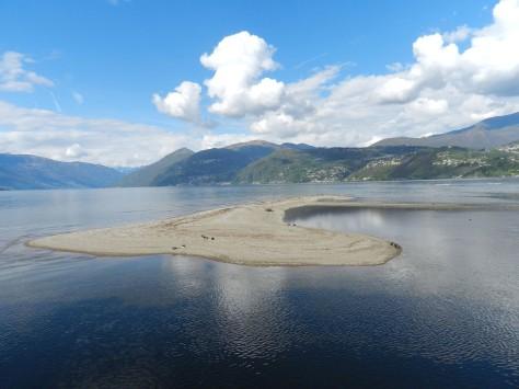 Figura 4: area A, isola alla foce del fiume Tresa, luglio 2014. Foto di Fabio Saporetti
