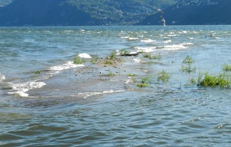 Figura 5: dopo le piogge dell'agosto 2014 l'isola è quasi scomparsa. Foto di Fabio Saporetti