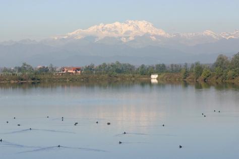 Figura 13: area G, vasche di laminazione del torrente Arno. Foto di Silvio Colaone