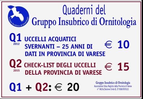Prezzi Q1 e Q2