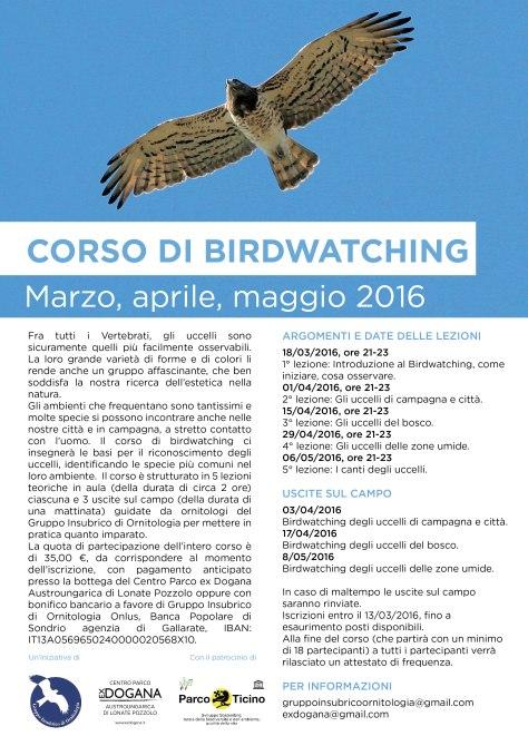 birdwatching jpg.jpg